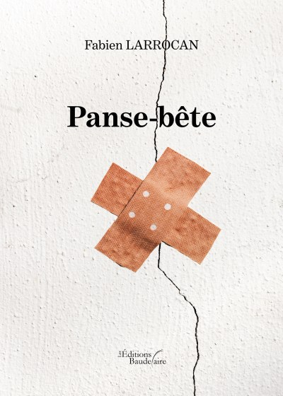 Fabien LARROCAN - Panse-bête