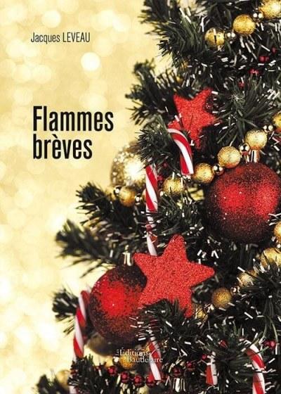Jacques LEVEAU - Flammes brèves