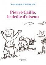 Jean-Michel FOURNIOUX - Pierre Caille, le drôle d'oiseau